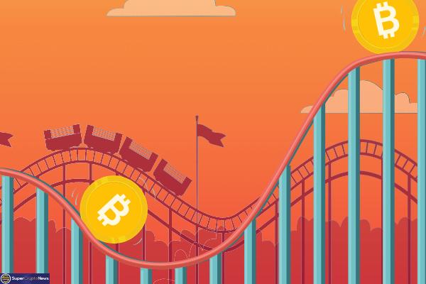 bitcoin price investors