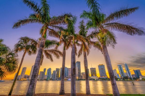 Miami crypto