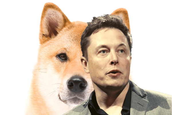 Elon Musk Supports Doge