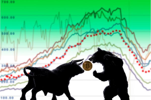 bulls versus bears