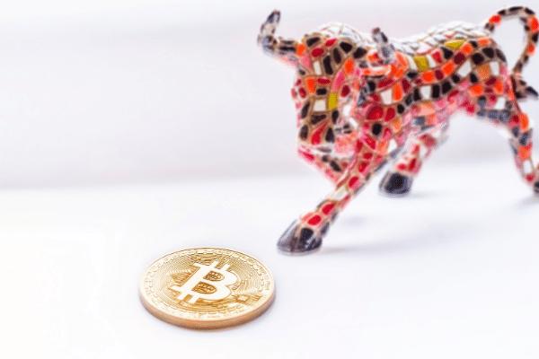 Bitcoin crypto bull run