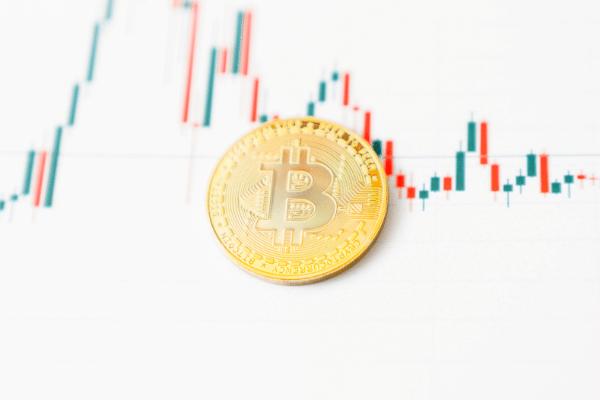 crypto market rally pause